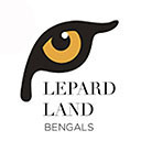 Lepardland  logo for Stripe